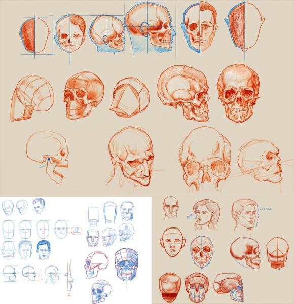 head_comp